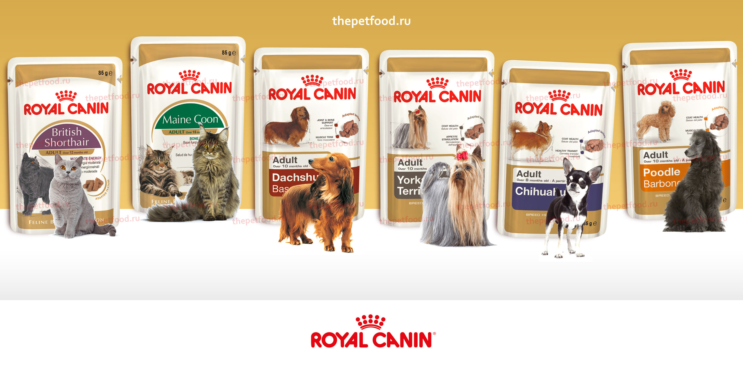 Лечебный корм Royal Canin Gastro Intestinal GI32 Feline